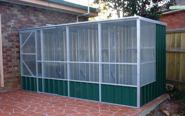 Bird Aviary With Steel Or Wired Flat Roof Price Starts