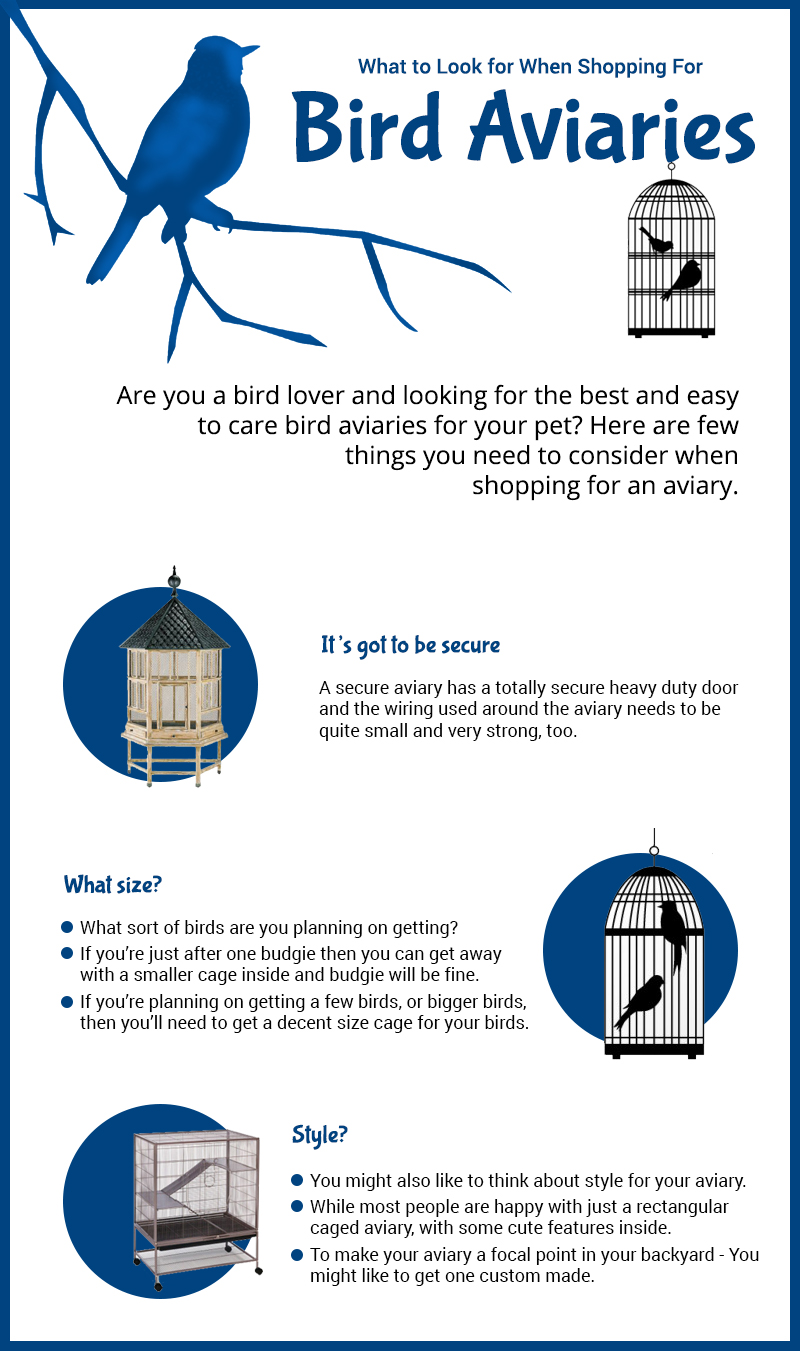 What to Look for When Shopping For Bird Aviaries